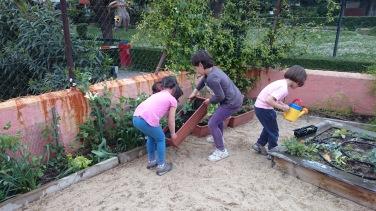 colocamos el huerto